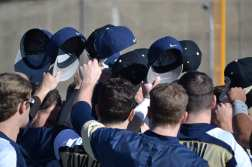 Pitt Baseball Hats Up Stock