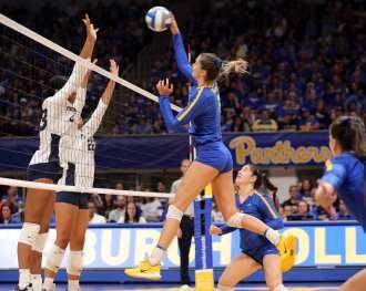 Layne Van Buskirk (7) for Pitt Volleyball September 22, 2019 -- David Hague/PSN