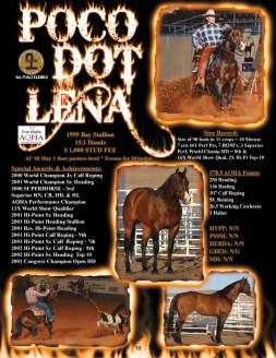 Poco Dot Lena