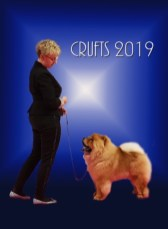 Crufts 2019 - First in Post Graduate