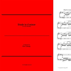 Etude in d minor (solo marimba)
