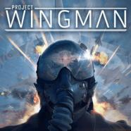 Project-Wingman-PiviGames