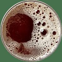 https://i1.wp.com/pivovarkunratice.cz/wp-content/uploads/beer_transparent_02.png?fit=200%2C200&ssl=1