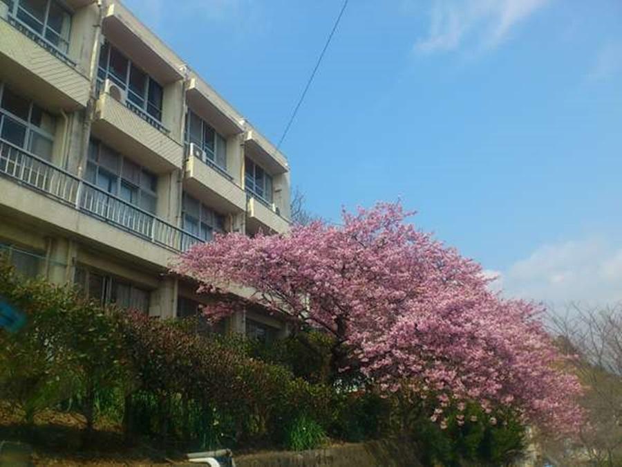 網元Kawazu酒店 Amimoto Kawazu Hotel