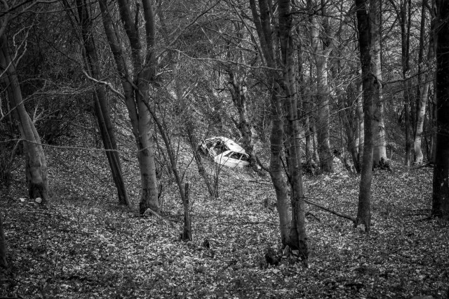 A Crashed Car in the Woods