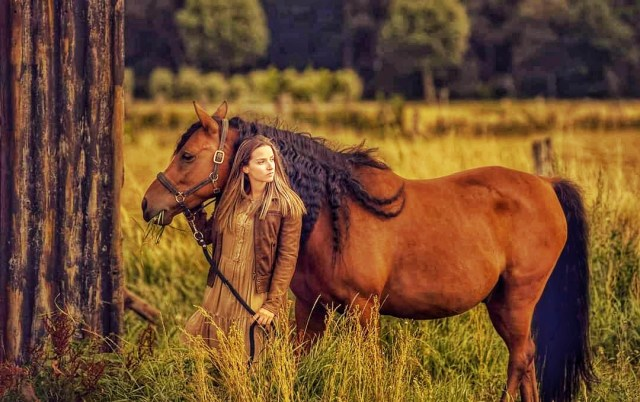 Girl Rider and Horse