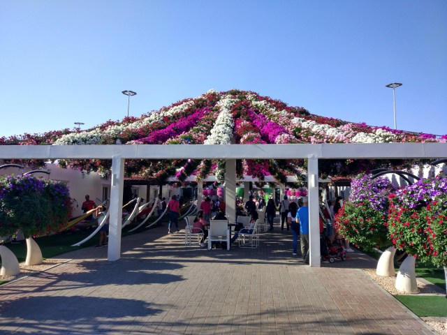 Glimpse of Miracle Garden