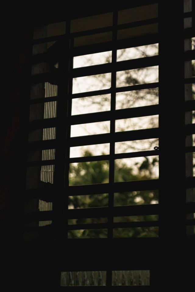 Window Silhoutte