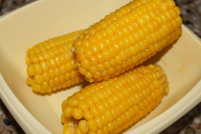 A Corn in a Plate