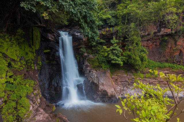 A waterfall in a jungle