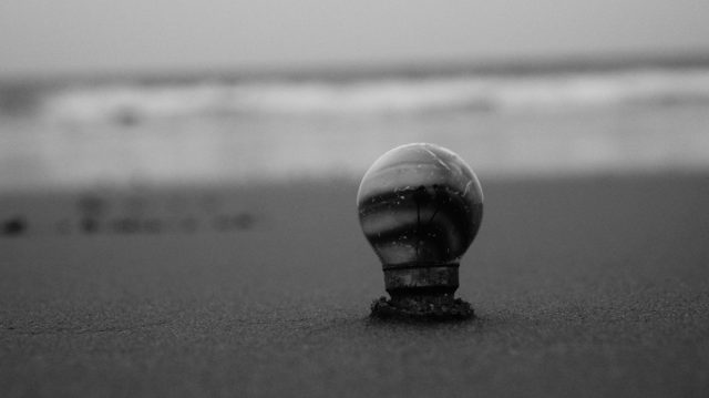 A bulb inserted in beach sand