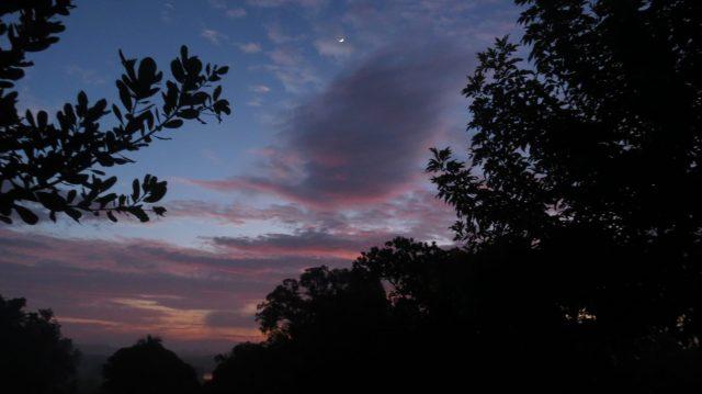 An early morning scene