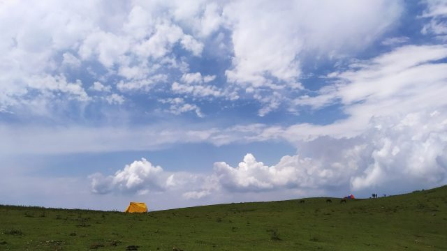 Green Meadow of Kashmir