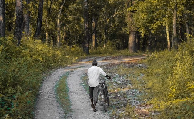 man with cycle going through the forest