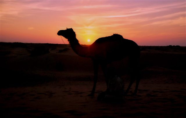 Sunset in Jaisalmer, Rajasthan.