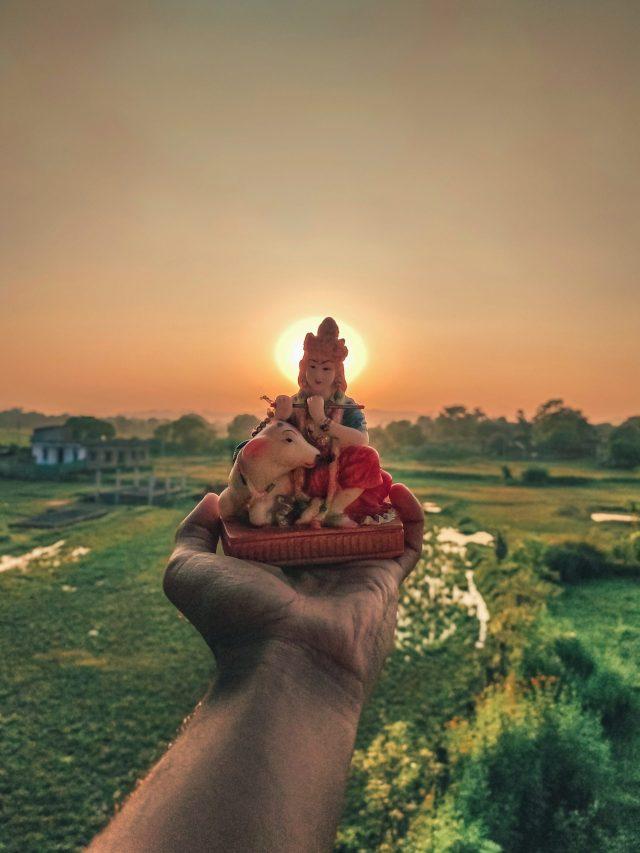 Lord Krishna idol in hand