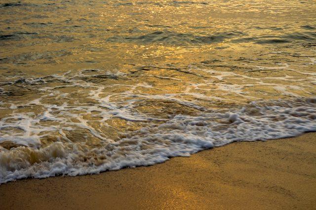 Candolim beach at Goa