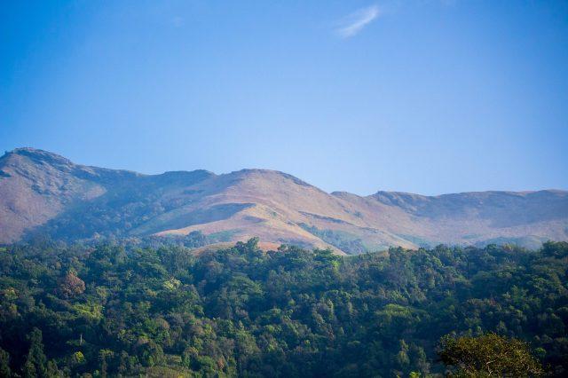Nature landscape