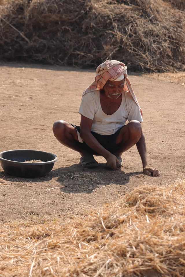 Farmer working on the ground