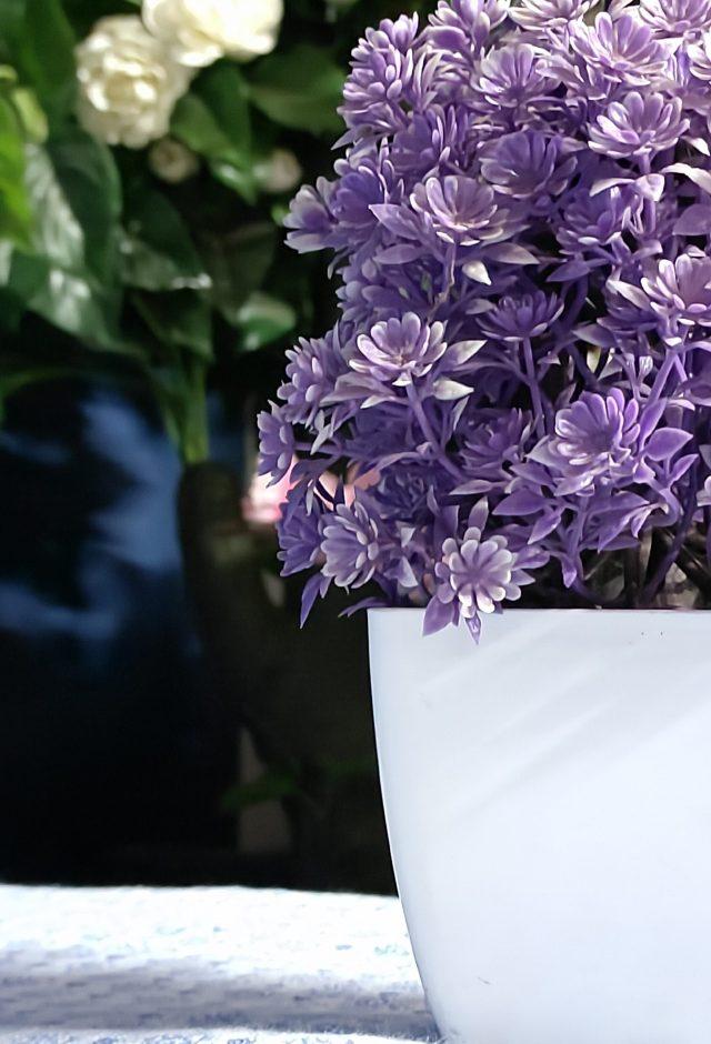 A flower pot