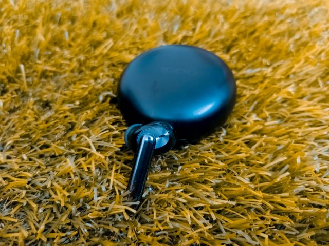 Ear pods in the grass