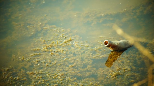 Bottle in dirty pond