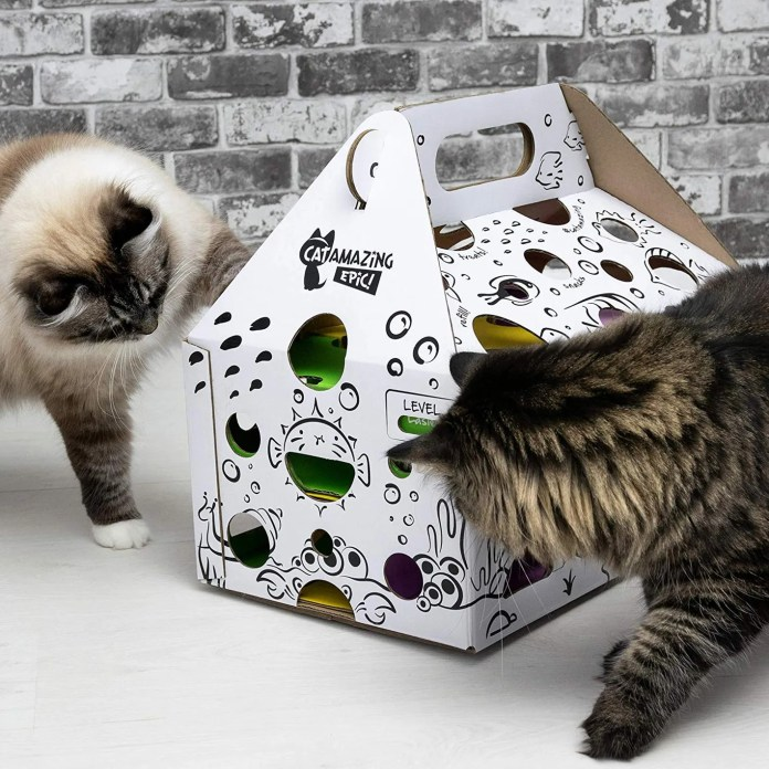 Cat Amazing Epic!