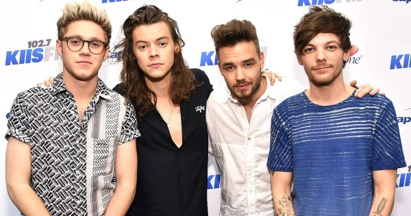 Did One Direction Break Up for Good?