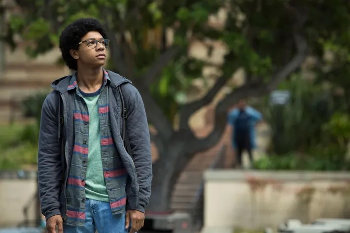 Image result for dear white people lionel