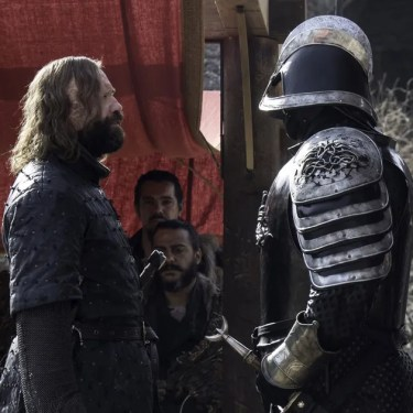 Image result for clegane brothers