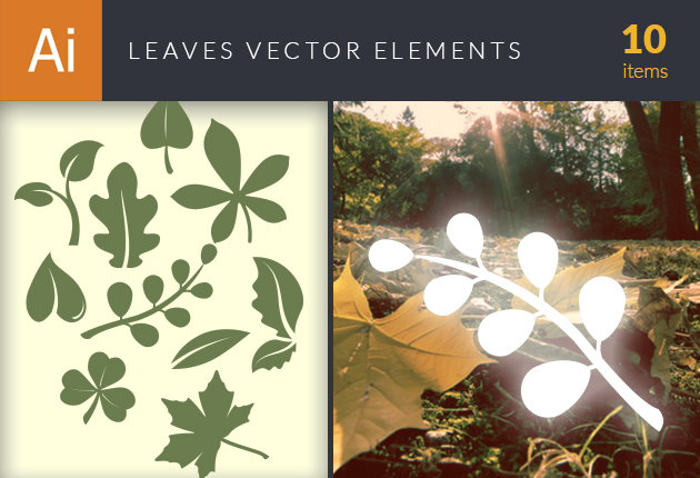 design-tnt-vector-leaves-small