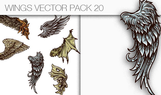designious-vector-wings-20-small