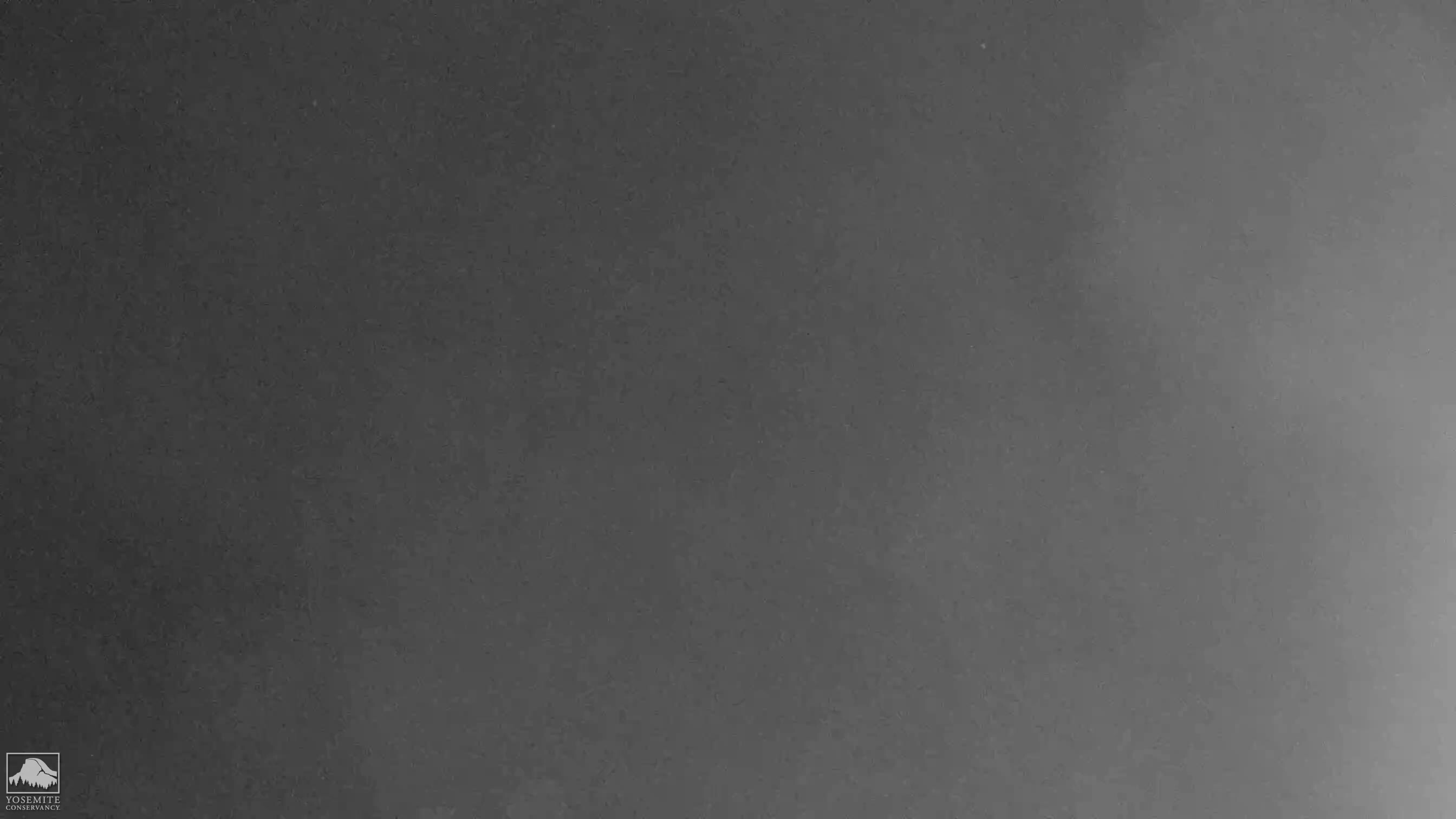 National Park Yosemite Live Cam