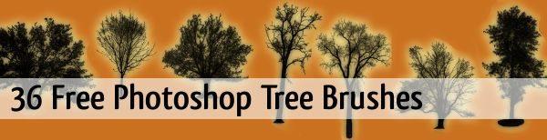 36-Free-Photoshop-Tree-Brushes
