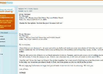 Moomeo email
