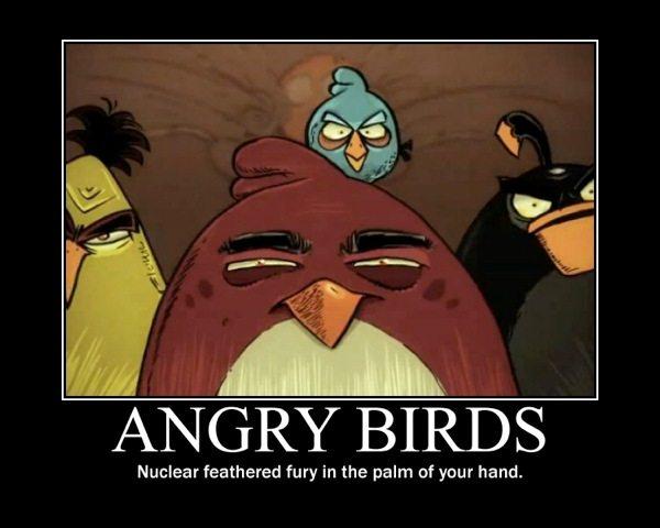 Angry Birds Demotivational