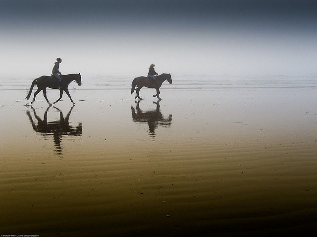 Two equestrian riders_35
