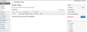 WordPress embed video