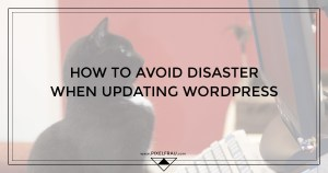 updating wordpress safely