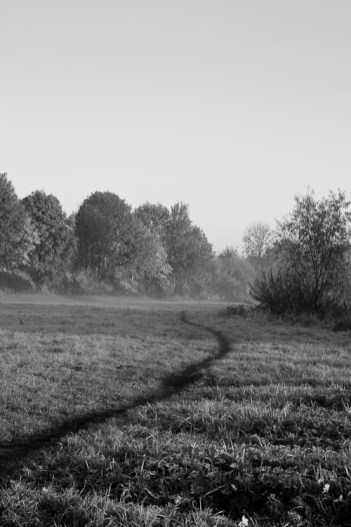 20111101-TM-IMG_4268