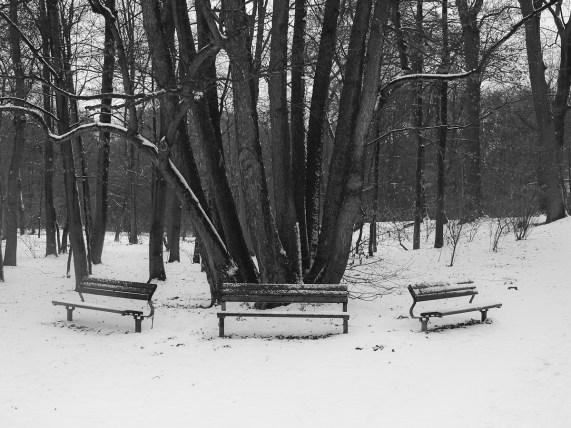 Winter   Bänke
