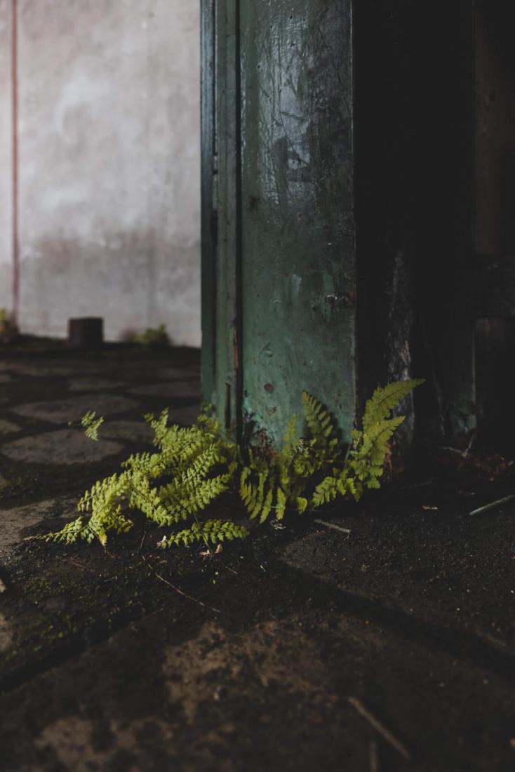 Die verlassene Drahtzieherei