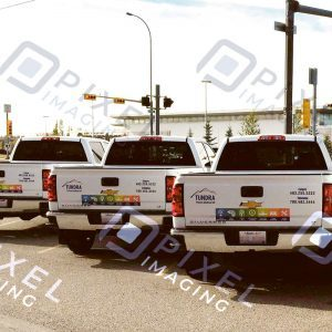 Custom-printed company logo decals and phone number vinyl lettering on company pickup truck fleet.