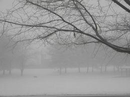 Foggy with a misty snow