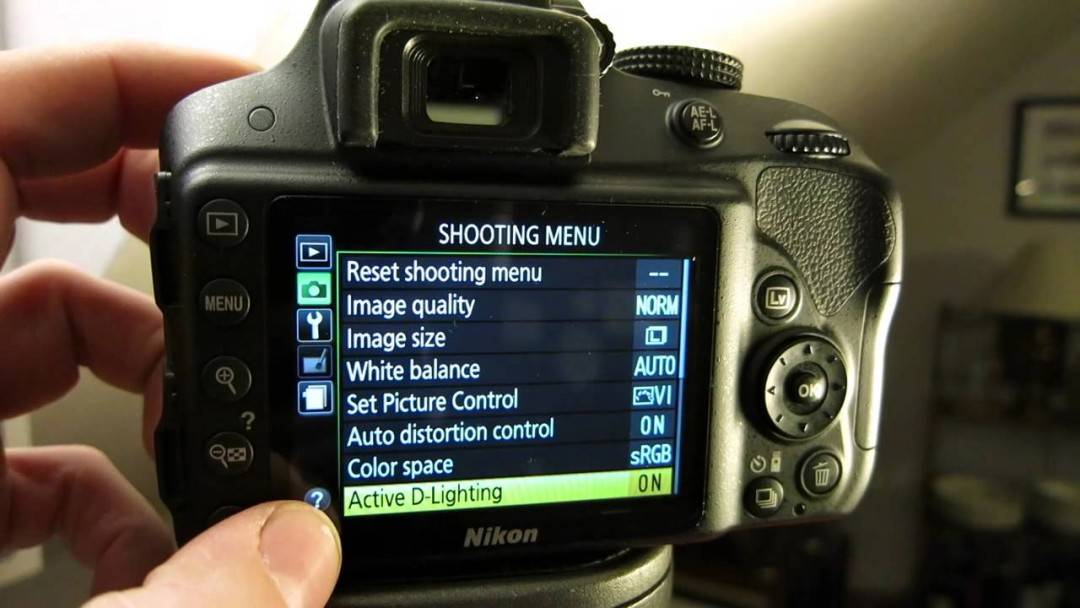 Focus Modes Tutorial for Nikon D3300