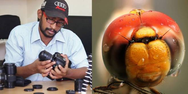 DSLR Tricks for Macro Photography on Budget