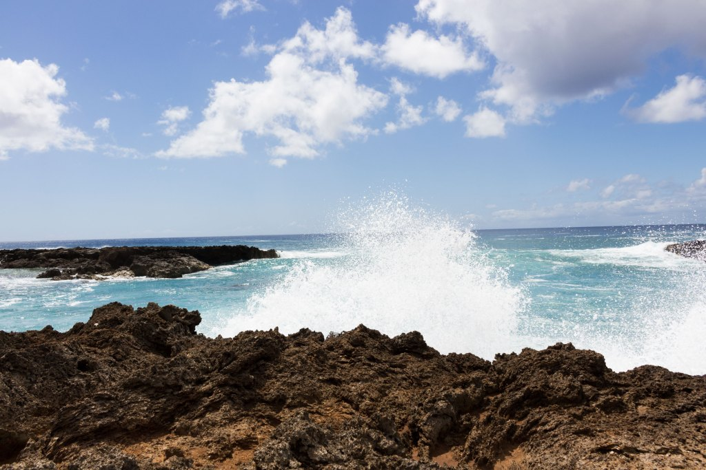 north shore waves hawaii