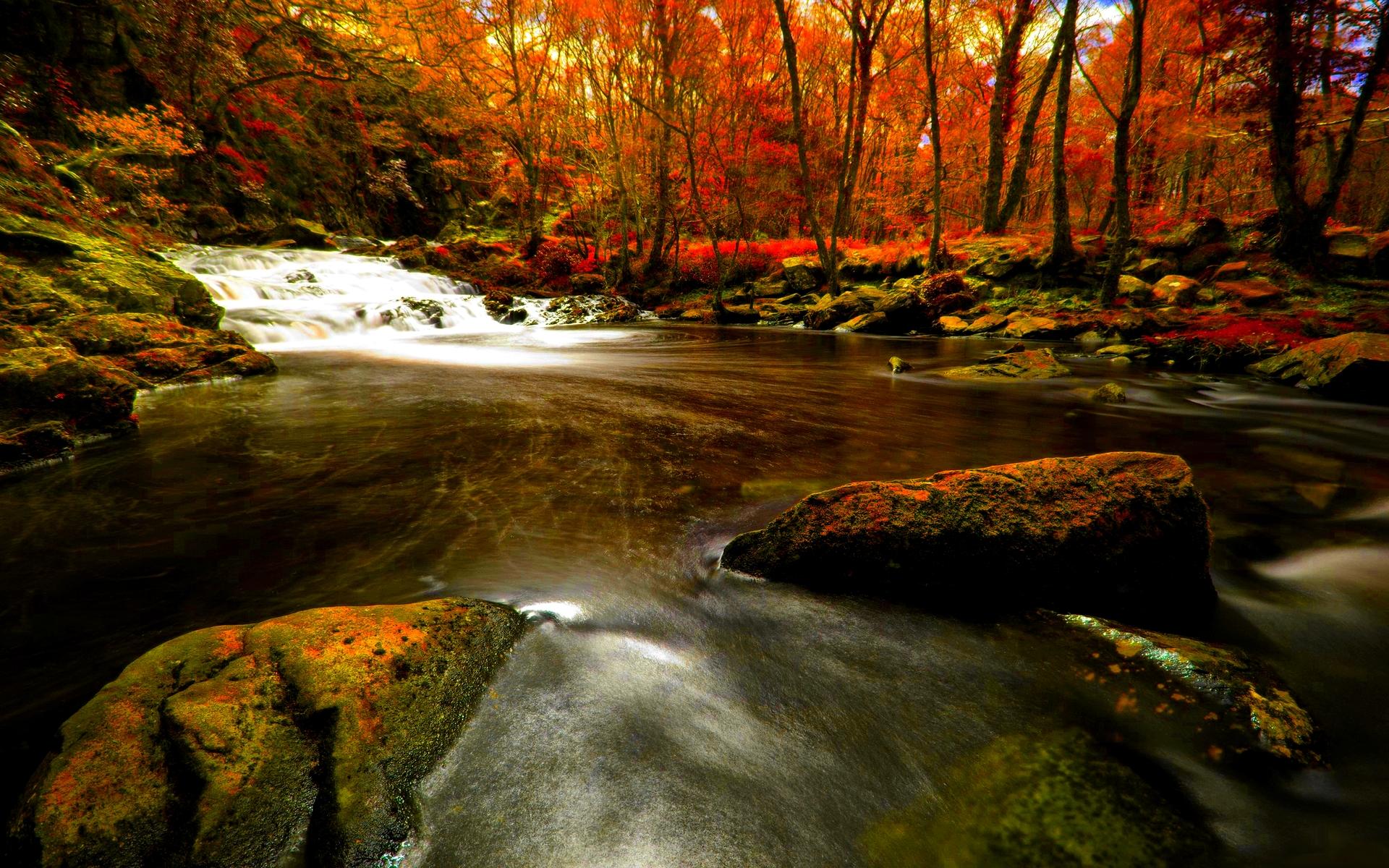Autumn River HD Wallpaper