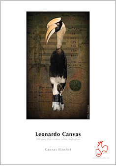 Papier HAHNEMUHLE Leonardo Canvas