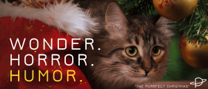A cautiousgrey tabby cat peeps out from behind a red and white Christmas stocking. Christmas ornaments are behind her. Superimposed are the words WONDER. HORROR. HUMOR. Humor is in yellow.